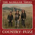 CD review - Country Fuzz